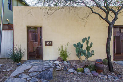Tucson Single Family Home For Sale: 630 S Meyer Avenue