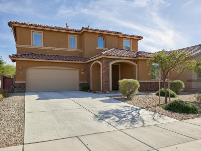 Pima County Single Family Home For Sale: 6413 W Wolf Valley Way