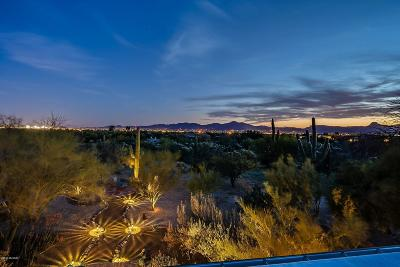 Tucson Single Family Home For Sale: Orange Ranch Estates