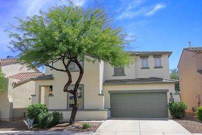 Single Family Home For Sale: 14853 S Camino Tierra Del Rio