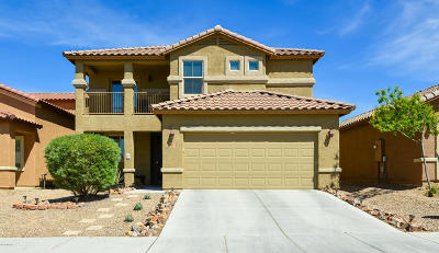 Pima County, Pinal County Single Family Home For Sale: 8975 S Mystic Meadow Road