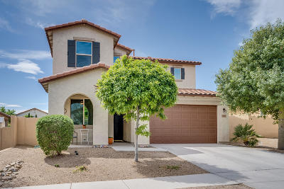 Single Family Home For Sale: 567 W Camino Sorpresa