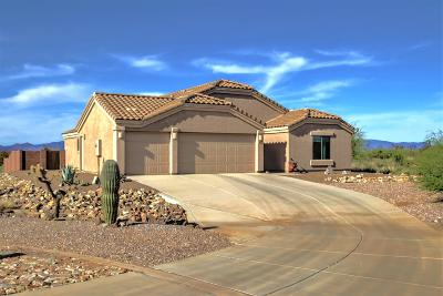 Sahuarita Single Family Home Active Contingent: 17705 S Deer Lodge Court