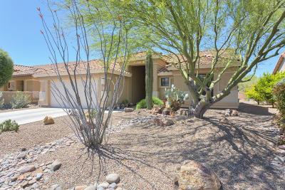 Green Valley Single Family Home For Sale: 921 N Desert Deer Ps