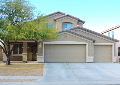 Pima County Single Family Home For Sale: 6430 W Swan Falls Way