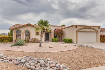 Oro Valley Single Family Home For Sale: 14442 N Alamo Canyon Drive