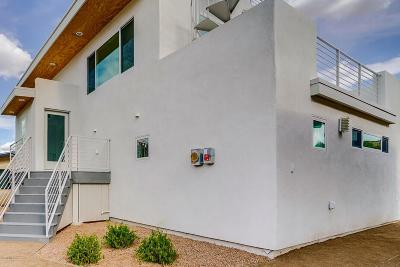 Tucson Single Family Home For Sale: 151 S Silverbell Avenue