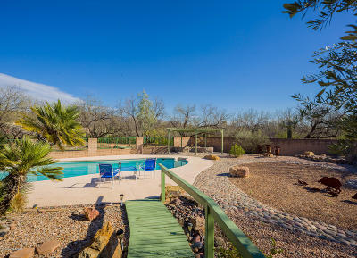 Tucson Single Family Home For Sale: 11242 E Stampede Place