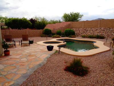 Corona de Tucson Single Family Home For Sale: 9280 E Bronze Hill Drive