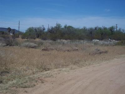 Residential Lots & Land Active Contingent: 11310 S Nogales Highway