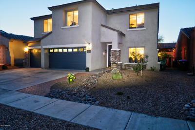 Sahuarita Single Family Home For Sale: 393 E Via Puente Lindo