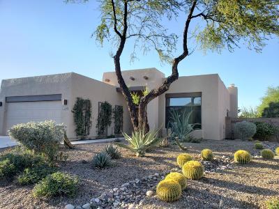 Tucson Single Family Home For Sale: 2980 W Placita Montessa