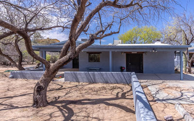 Vail Single Family Home Active Contingent: 9500 S Tewa Trail