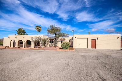 Tucson Single Family Home For Sale: 9450 E Catalina Highway