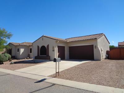 Vail Single Family Home For Sale: 9797 S Camino De La Calinda