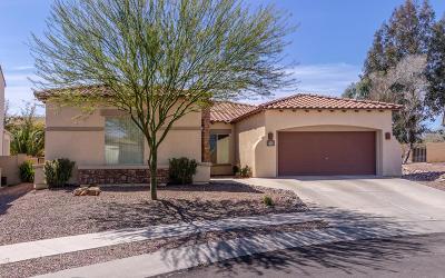 Pima County Single Family Home Active Contingent: 151 W Camino Rancho Cielo