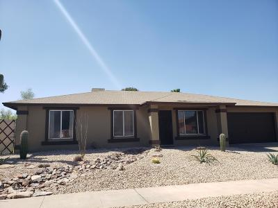 Tucson Single Family Home For Sale: 3841 W Orangewood
