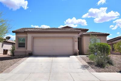 Marana Single Family Home For Sale: 11129 W Fallen Willow Drive