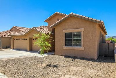 Tucson Single Family Home For Sale: 8263 N Willow View Drive