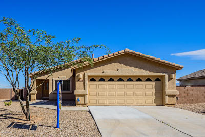 Pima County, Pinal County Single Family Home Active Contingent: 5225 E Agave Vista Drive