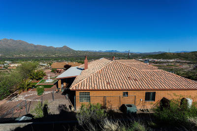 Rio Rico Single Family Home For Sale: 1425 Circulo Sombrero