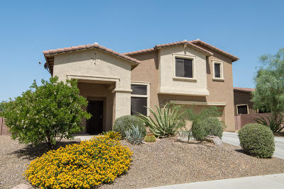 Oro Valley Single Family Home For Sale: 11911 N Prospect Point Place