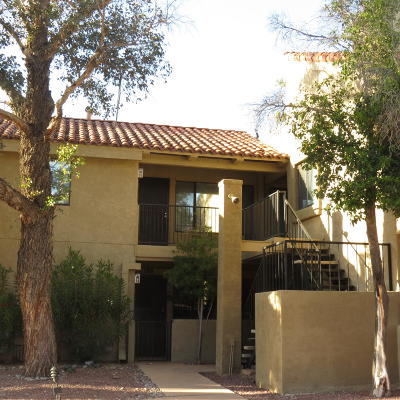 Tucson Condo For Sale: 8255 N Oracle Road #209