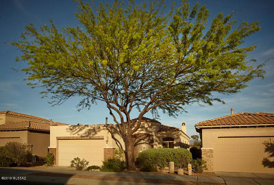 Tucson Single Family Home Active Contingent: 5974 N Campo Abierto