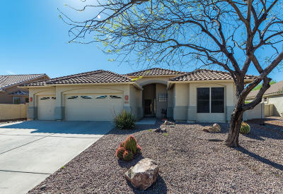 Oro Valley Single Family Home For Sale: 14085 N Hemet Drive