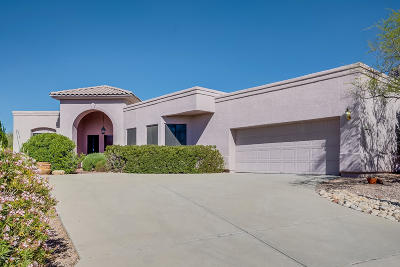Pima County, Pinal County Single Family Home For Sale: 10100 N Alder Spring Drive