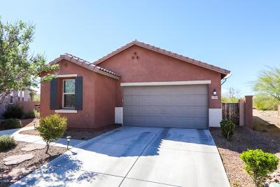 Single Family Home For Sale: 13792 S Camino Acelga