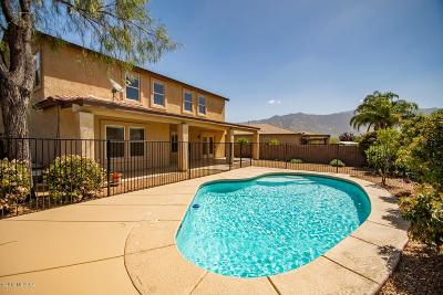 Tucson Single Family Home For Sale: 3638 E Canter Road
