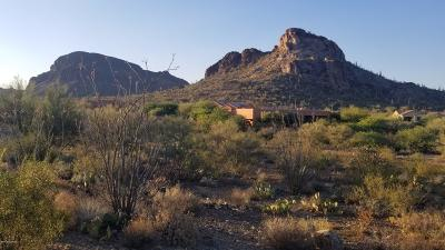 Tucson Residential Lots & Land For Sale: 4795 S Bent Saguaro Lane #15