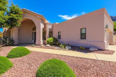 Tucson Single Family Home For Sale: 10140 N Alder Spring Drive