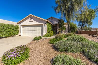 Tucson Single Family Home Active Contingent: 3618 W Sunbonnet Place