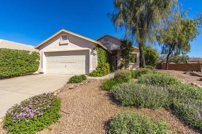 Pima County Single Family Home For Sale: 3618 W Sunbonnet Place