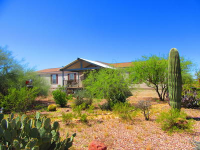 Pima County Manufactured Home For Sale: 3410 S Irene Boulevard