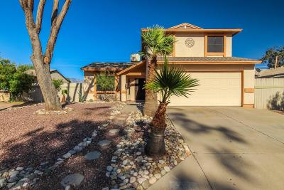Pima County Single Family Home For Sale: 5890 N Belbrook Drive