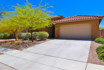 Pima County Single Family Home For Sale: 6519 W Wolf Valley Way