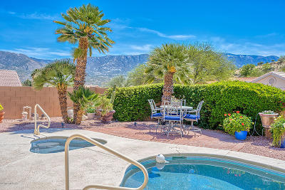 Tucson Single Family Home For Sale: 37721 S Border Drive
