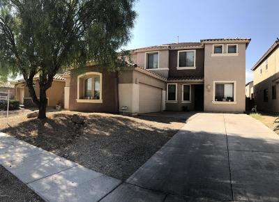Pima County Single Family Home For Sale: 6471 W Swan Falls Way