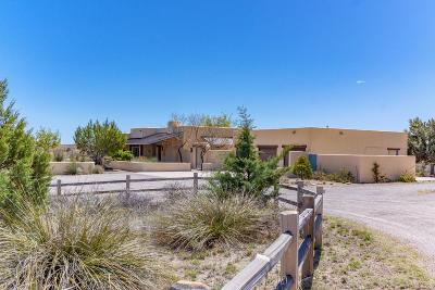 Sonoita Single Family Home For Sale: 1 Pinto Trail