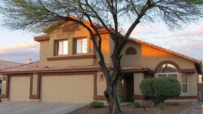 Single Family Home Active Contingent: 1055 S Goldenweed Way