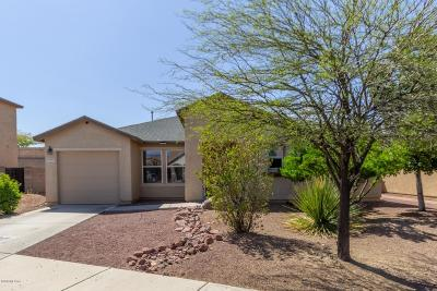 Single Family Home Active Contingent: 4786 S Chilean Loop