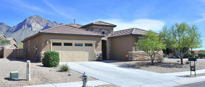 Oro Valley Single Family Home For Sale: 10824 N Avenida Vallejo