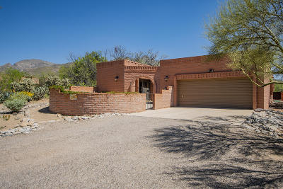 Tucson Single Family Home For Sale: 2171 E Circulo Solaz