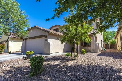 Tucson Single Family Home For Sale: 9681 N Deimos Drive