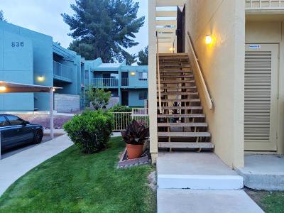 Tucson Condo For Sale: 834 S Langley Avenue #202