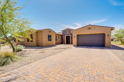Tucson Single Family Home For Sale: 11631 N Makati Place