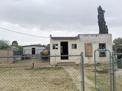 Pima County Single Family Home For Sale: 232 E Jacinto Street